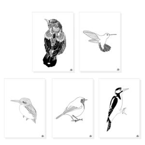 Ansichtkaarten set vogel. Set van 5 kaarten met hand geillustreerde vogels in zwart wit.