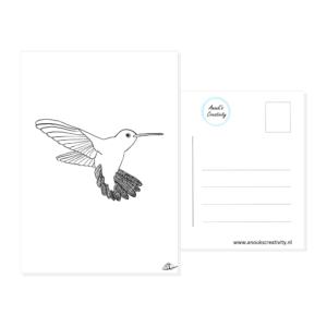 Ansichtkaart kolibrie. Ansichtkaart met een handgemaakte illustratie van een kolibrie in zwart wit. De achterkant van de ansichtkaart is ook te zien, daarop staan lijntjes voor het adres en is er plaats voor een postzegel.