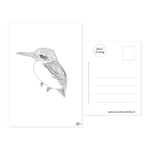 Ansichtkaart ijsvogel. Een ansichtkaart met handgemaakte illustraties van een ijsvogel. De achterkant van de ansichtkaart is ook te zien, daarop staan lijntjes voor het adres en is er plaats voor een postzegel.