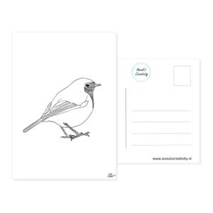 Ansichtkaart roodborstje. Een ansichtkaart met handgemaakte illustraties van een roodborstje. De achterkant van de ansichtkaart is ook te zien, daarop staan lijntjes voor het adres en is er plaats voor een postzegel.