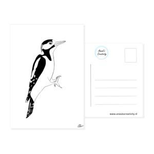 Ansichtkaart specht. Een ansichtkaart met handgemaakte illustraties van een specht. De achterkant van de ansichtkaart is ook te zien, daarop staan lijntjes voor het adres en is er plaats voor een postzegel.