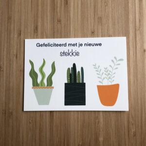 Wenskaart met plantjes en de tekst gefeliciteerd met je nieuwe stekkie